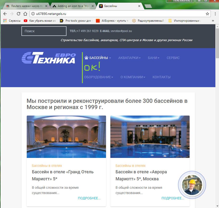 Homeicon_bug-Chrome1