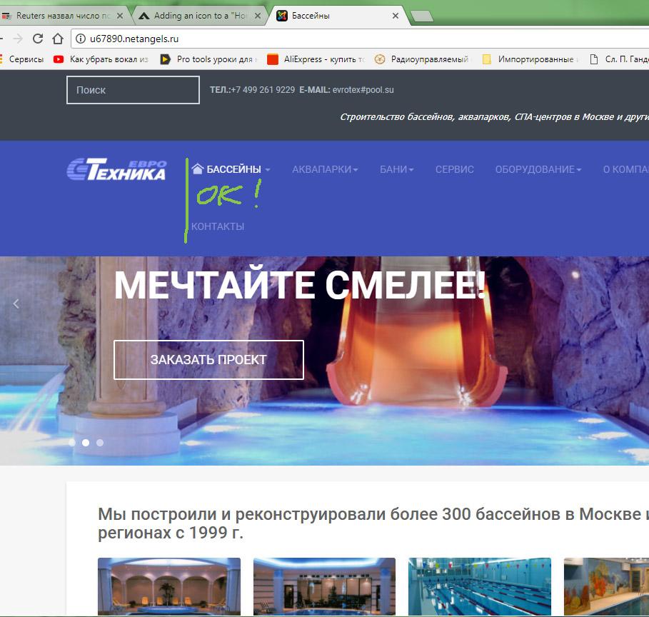 Homeicon_bug-Chrome2
