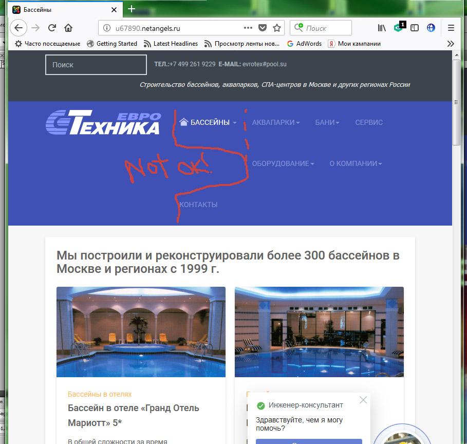 Homeicon_bug-Firefox2