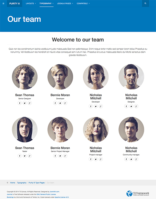 Amazing Team Templates Vignette - Example Resume Ideas ...
